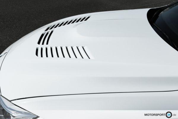 BMW M3 F80 Motorhaube GTR
